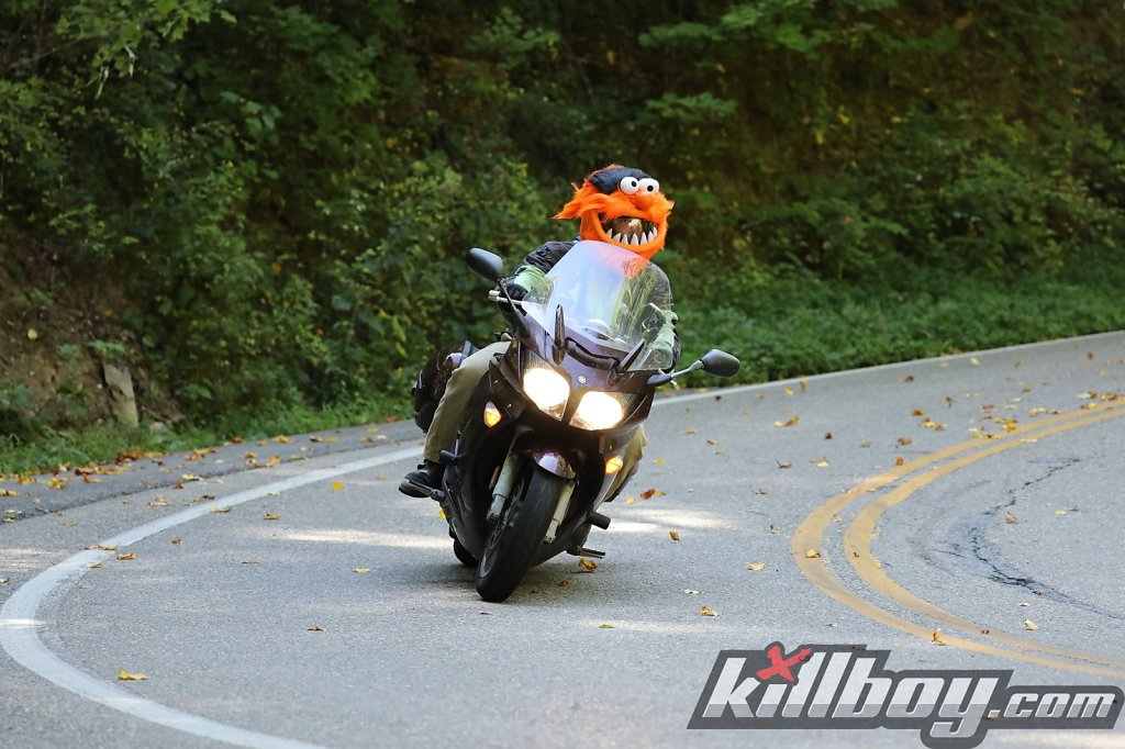 Bryce-Muppet_Motorcycle_Dragon_2016.jpg